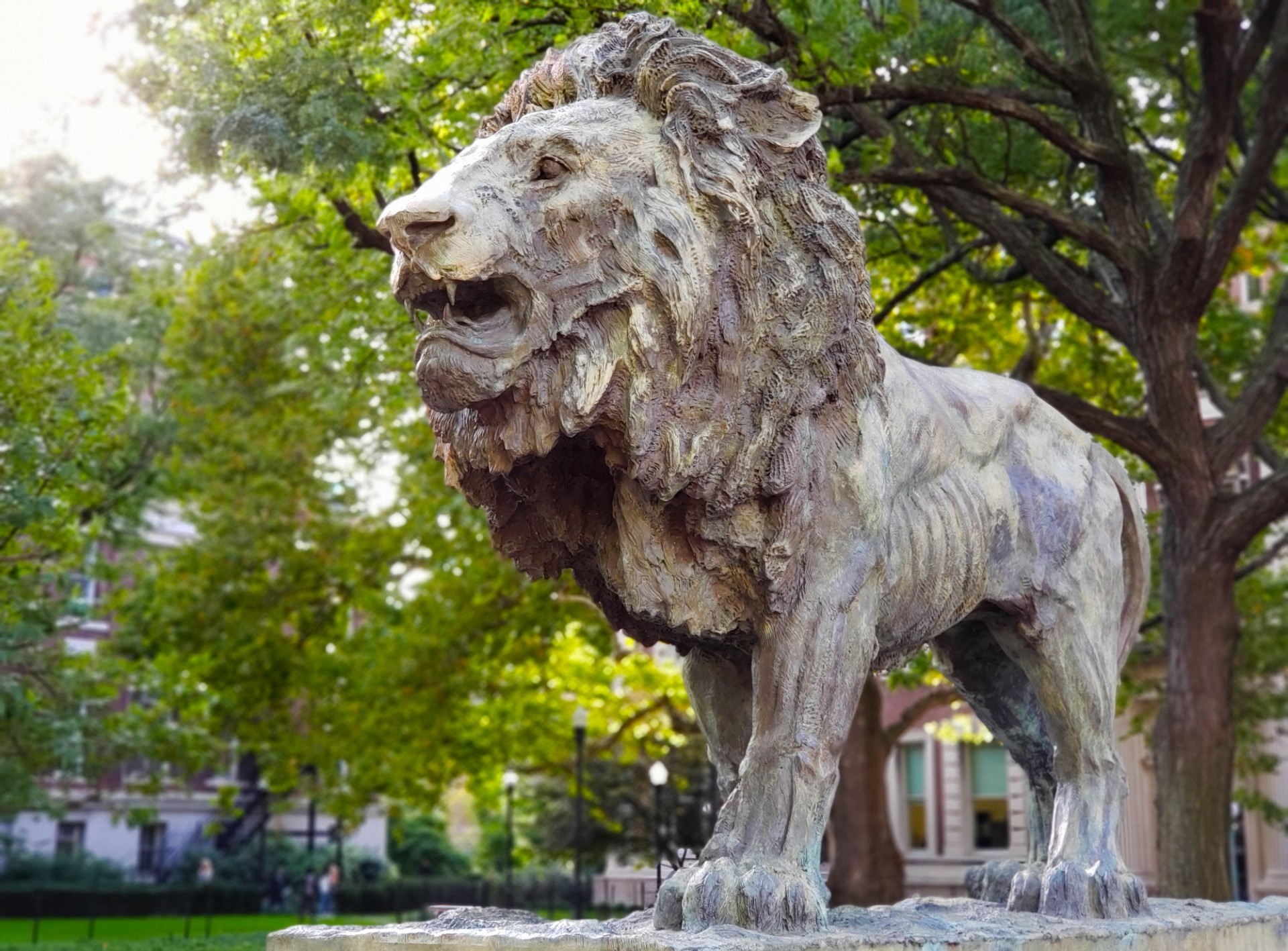 Picture of Lion Statue